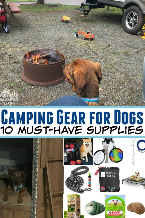 best camping supplies for dogs