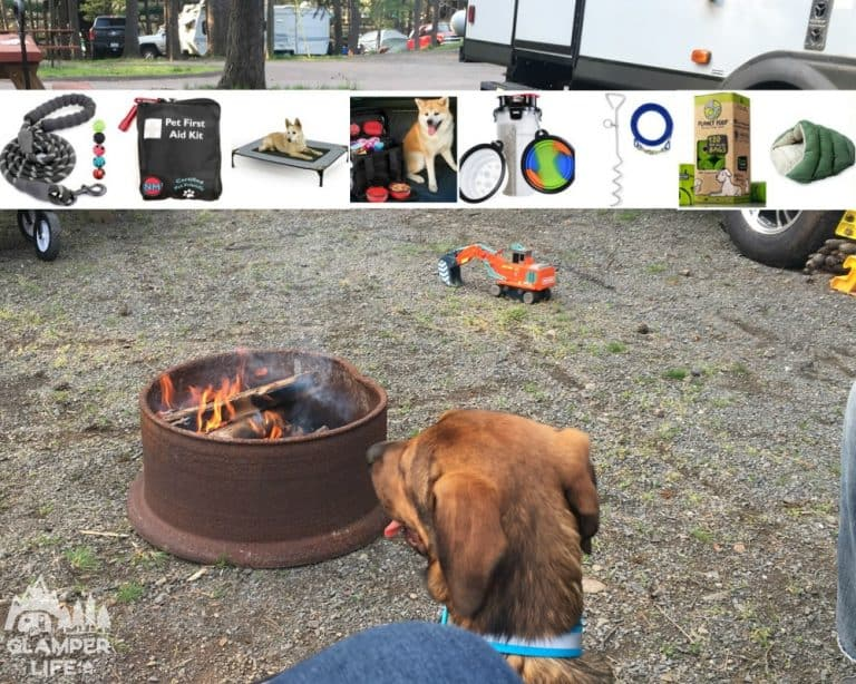 dog campground campfire rv