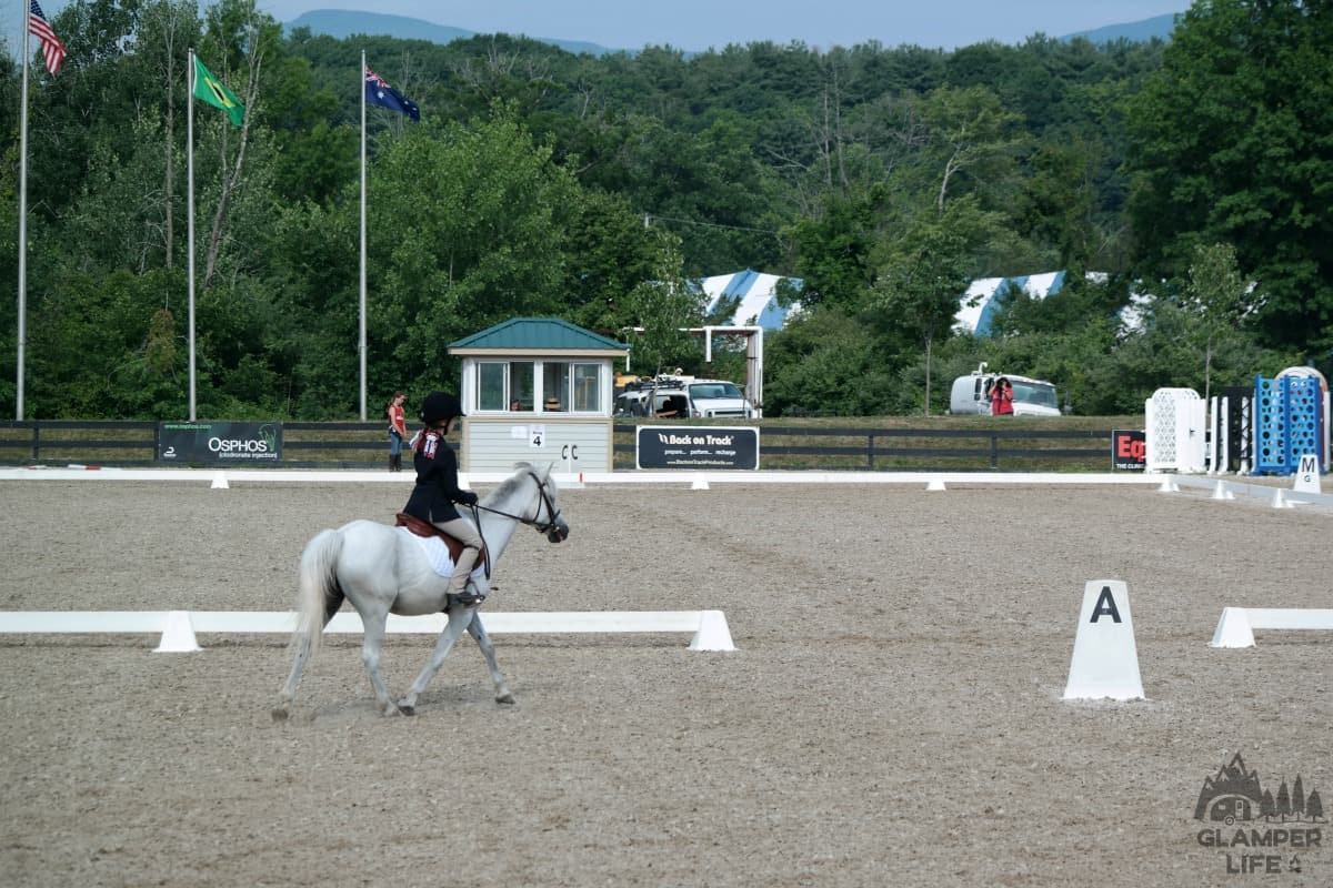 Dressage for Kids Festival New York