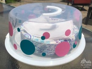 Cake Carrier Plate Holder