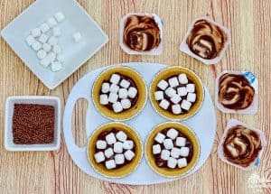 Smores Pies Marshmallows