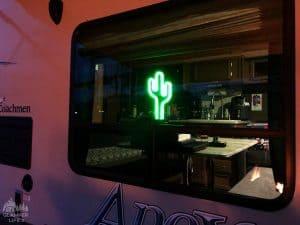 Cactus Novelty Light