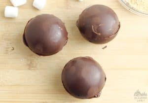 Topped Hot Chocolate Bombs
